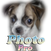 Photo Dog Pro