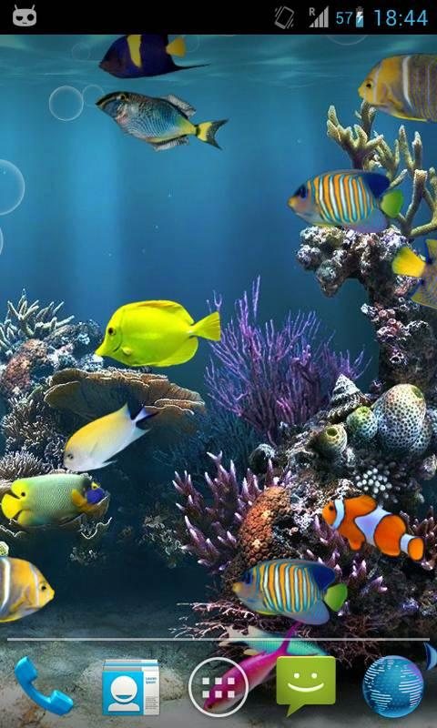 Fish aquarium live wallpaper android apps on google play for Fish tank 3d live wallpapers