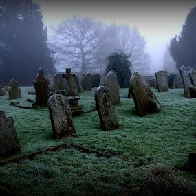 Graveyard in Winter by Doug Faraday-Reeves - City,  Street & Park  Cemeteries ( winter, cemetery, headstones, graveyard )