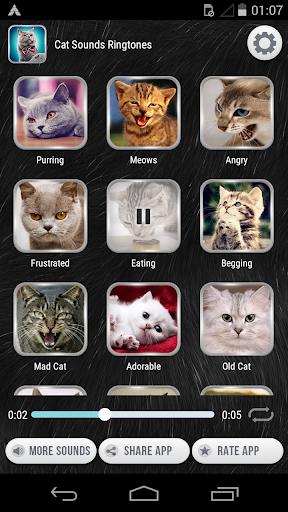 猫的声音铃声|玩音樂App免費|玩APPs