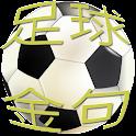 Le verset  FIFA 2014 football icon