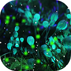 Firefly Live wallpaper Pro icon