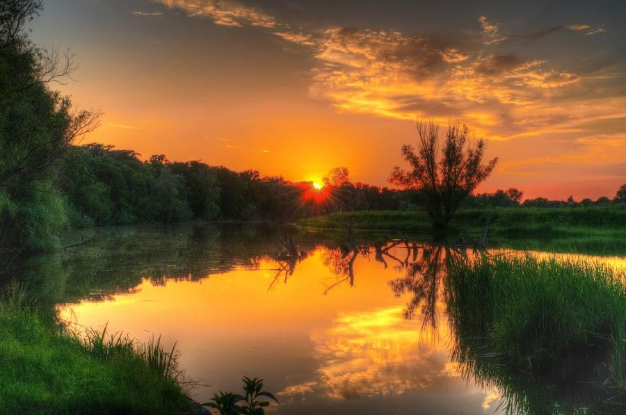 Sunset at river by Vanja Vidaković - Landscapes Sunsets & Sunrises ( vukovar, 2014, sunset, zalazak, croatia, hrvatska, river,  )