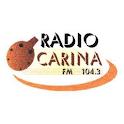 Ocarina FM icon