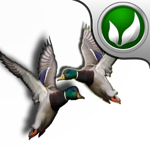 Real Duck Hunter !! for PC and MAC