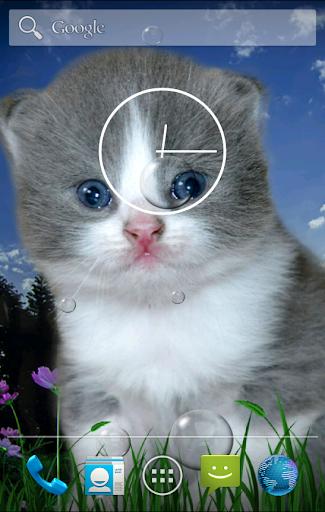 Kitten bubbles Live Wallpaper
