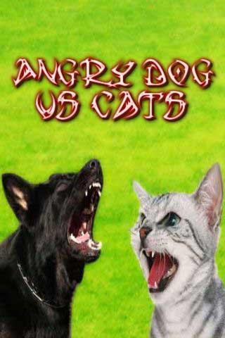 Angry Dog vs Cats
