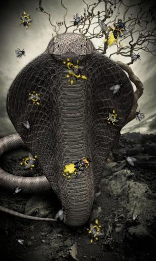 玩免費個人化APP 下載コブラ lwp 〜 ヘビのコブラ ライブ壁紙の女王を満たす app不用錢 硬是要APP
