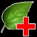 Зеленая аптека icon