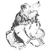 Bären Buchsi