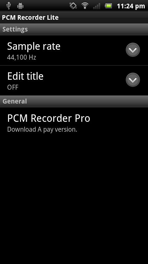 PCM Recorder Lite - screenshot