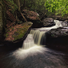 Aaron's Cascade spring 2014 by Aaron Campbell - Instagram & Mobile iPhone ( iphone 5s, falls trail, luzerne county, glen leigh, pennsylvania, spring, ricketts glen, iphoneography, apple iphone, nature, cascade, state park, slow shutter )