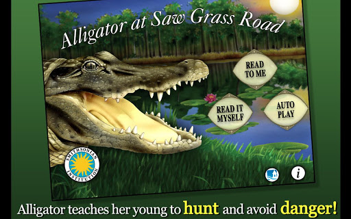 Alligator at Saw Grass Road