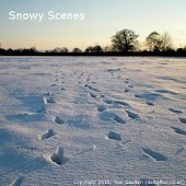 Snowy Scenes - Live Wallpaper