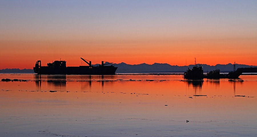 Cook Inlet Sunset by Frank Keller - Landscapes Sunsets & Sunrises ( water, anchorage, sunset, alaska, landscape, cook inlet )