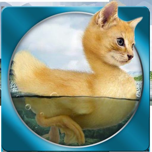 インポッシブルの写真 娛樂 App LOGO-APP試玩