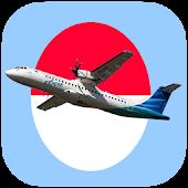 Pesawat Maskapai Indonesia