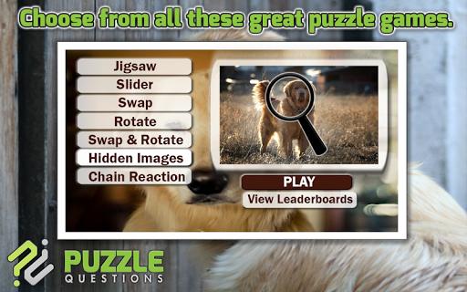 Golden Retriever Puzzle Games
