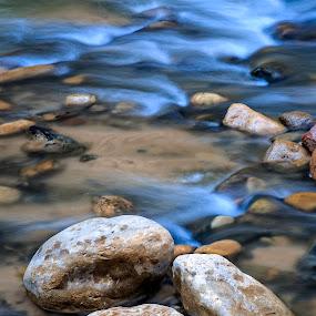 by Flavio Mini - Nature Up Close Water ( water, utah, virgin river, rocks, zion,  )