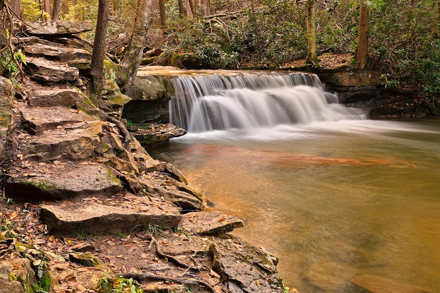 Swallow Falls by Nicolas Raymond - Landscapes Waterscapes ( stone, rock, flow, nature, fluid, passage, foliage, trail, maryland, swallow, swallow falls, stepping, steps, united states, passageway, scene, trees, natural, stepping stones, stream, smooth, america, waterscape, rocky, waterfall, landscape, usa, swallow falls state park, stairs, creek, path, long exposure, rocks, water, streaming, hdr, park, flowing, brook, lush, cascades, scenic, soft, organic, falls, cascading, scenery, stones, river,  )