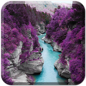 Purple Nature Live Wallpaper