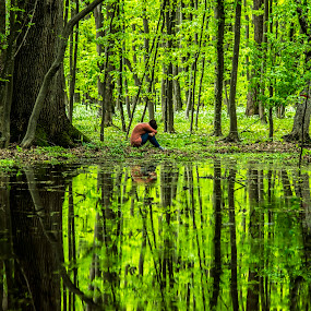 The soul of the forest by FIWAT Photography - Landscapes Forests ( reflection, green, forest, puddle, renewal, trees, forests, nature, natural, scenic, relaxing, meditation, the mood factory, mood, emotions, jade, revive, inspirational, earthly, relax, tranquil, tranquility )