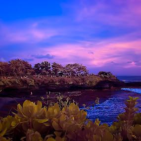 Landscape on false color by Andi Irawan - Landscapes Sunsets & Sunrises ( tanah lot )
