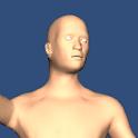 Pose 3D icon