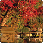lake autumn lwp icon