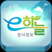 e하늘 장사정보