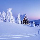 Snowfall HD Live Wallpaper
