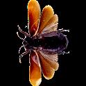 SpaceBugs logo