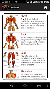 Dumbbell Muscle Workout Plan P v2.1