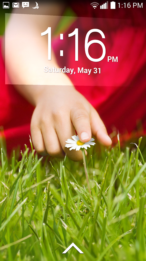 Lockscreen Policy - screenshot