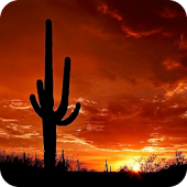 PoleStar Arizona