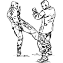 Army COMBATIVES FM3-25.150 icon