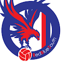 EaglesRBS CPFC: Crystal Palace icon