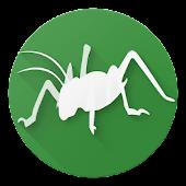 Bugs of New Zealand Free