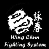 Wing Chun Fighting System
