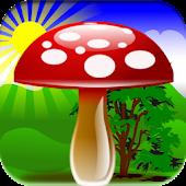 Mushroom Games Free
