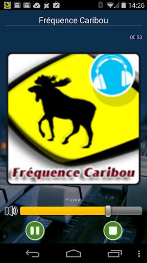 Fréquence Caribou