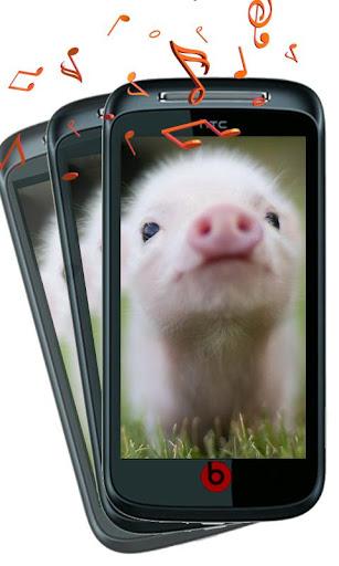 豚は豚を鳴らし