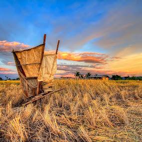 Hard work of a farmer by Johan Wan - Landscapes Prairies, Meadows & Fields