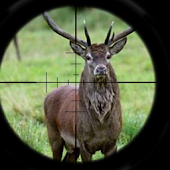Deer Hunt: Rifle Shot Kill