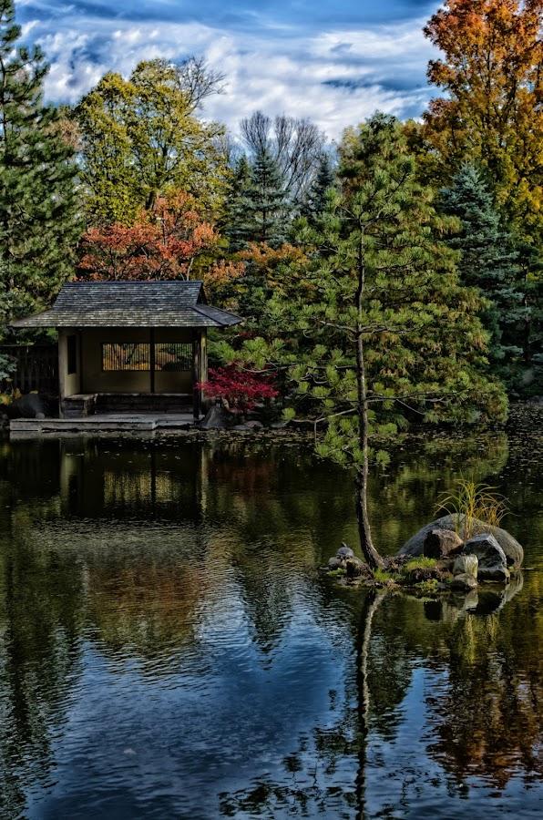 by Don Crane - Landscapes Waterscapes