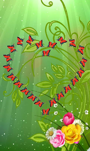 Love Butterfly's Live