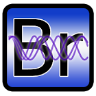 Personal Biorhythms Calculator icon
