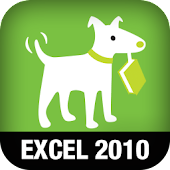 Excel 2010: Missing Manual