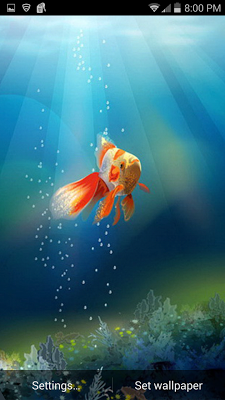 Goldfish in Phone LWP - screenshot