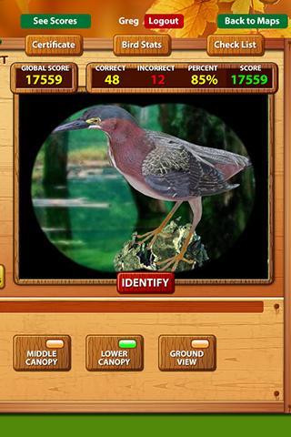 Virtual Birdwatcher